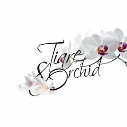 Shake osvežilec za omaro Tiare & Orchid